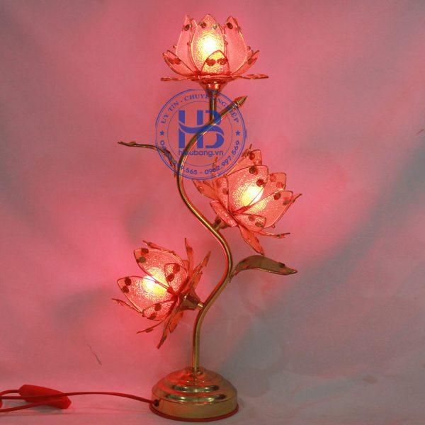Đèn Hoa Sen 3 Bông Vàng 55cm Đẹp Giá Rẻ ở Hà Nội | Cửa hàng Hiếu Bằng