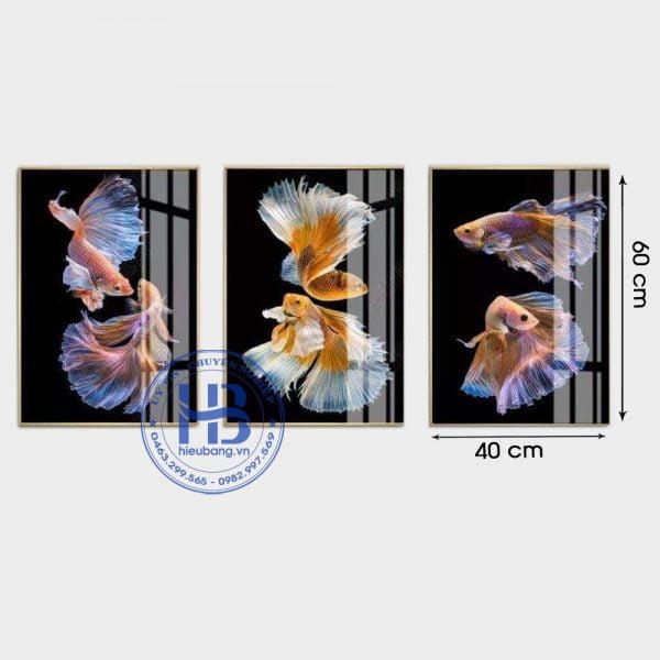 Bộ 3 tranh treo tường cá cảnh 40x60cm đẹp giá rẻ ở Hà Nội